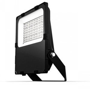 Halcyon 300Watt EX204 LED Flood light 37,500 Lumens